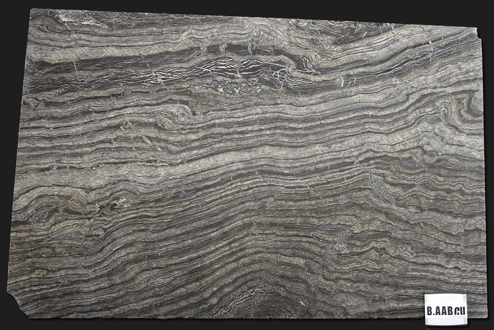 Serpentine Stone Slabs : Olympia tile stone slab division